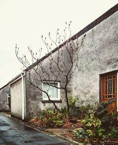 """Popular housing style.  #Cumbernauld #ravenswood #modernist_architecture… Social Housing, Modernism, Scotland, Buildings, Memories, Popular, Architecture, Instagram Posts, Image"