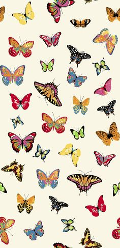 butterflies Cute Patterns Wallpaper, Aesthetic Pastel Wallpaper, Aesthetic Wallpapers, Cute Wallpaper Backgrounds, Pretty Wallpapers, Cool Wallpaper, Butterfly Wallpaper Iphone, Iphone Background Wallpaper, Photo Wall Collage