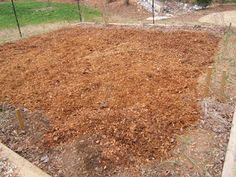 horse manure with sawdust fertilizer for our garden.