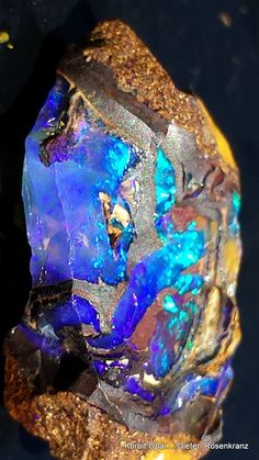 Koroit Opal [ section of a Koroit Opal Nut ]