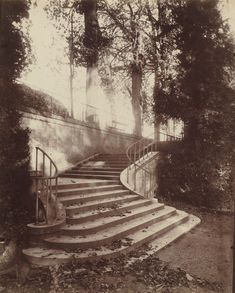 The Steps at Saint-Cloud. Eugène Atget, 1906