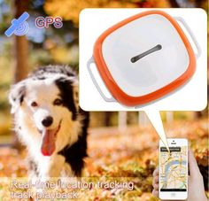 Mini Tracking Devices for Pets