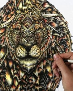Lion. Animal Drawings and Mandalas. By Faye Halliday.