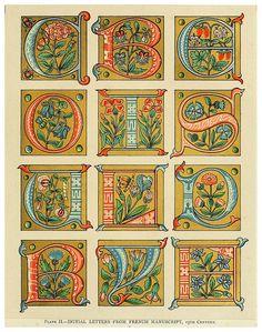 alphabet by William John Loftie, 1880 Alphabet Art, Letter Art, Graffiti Alphabet, Initial Letters, Medieval Manuscript, Medieval Art, Renaissance Art, Illuminated Letters, Illuminated Manuscript