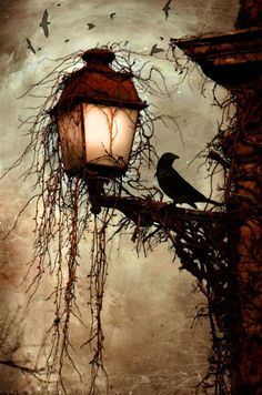 Crow on lamp post at night Dark creepy old London gothic feel. Love the hanging moss and carrion's circling in the back Fantasy Kunst, Arte Obscura, Ouvrages D'art, Pics Art, Oeuvre D'art, Cool Art, Art Photography, Horror, Illustration Art