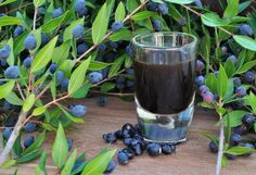 Mirto - a local liquor made of Myrtle berries