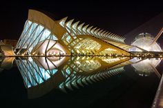 Valencia City of Arts and Science : Calatrava Building