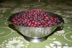 Service Berry Jam - Service berries are so pretty!