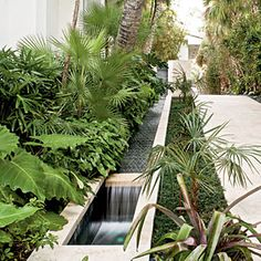 Allow For a Water Feature - 10 Ways to Create a Backyard Oasis - Coastal Living Contemporary Landscape, Landscape Design, Garden Design, Tropical Landscaping, Backyard Landscaping, Landscaping Ideas, Tropical Gardens, Modern Backyard, Tropical Plants