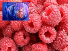 Frambuesas que se transforman en moléculas beneficiosas para la salud