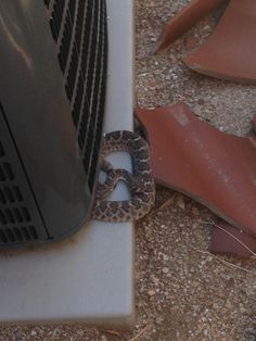 Owner said the unit was rattling? - http://www.hvac-hacks.com/owner-said-the-unit-was-rattling/