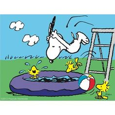It's summer Charlie Brown!