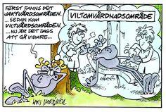 Hälge by Lars Mortimer
