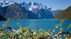 13 bilder som inspirerer til ferie på Vestlandet | Visit Flåm Boat Restaurant, Norway Fjords, Wild Nature, World Heritage Sites, Grand Canyon, Cruise, Journey, Landscape, Travel
