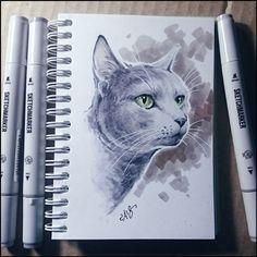 """Аквамарин из """"Республики кошек"""". Правда, его уже пристроили в семью, опоздала я с рисунком... #cat #markers #instacat #kitty #cute #catmuseum #кот #кошка #котокафе #рисунок"""