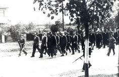 1945 Nýřany, transport nacistů