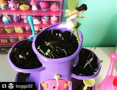 Any lucky children receiving for Valentine's Day? My Fairy Garden, Child Love, Growing Plants, Valentines, Children, Valentine's Day Diy, Young Children, Valantine Day, Kids