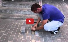 Man Hears Barking From Under Pavement and Rescues Buried-Alive Dog