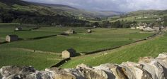 Herriot Country Tours will take you on a private tour of James Herriot's Yorkshire Dales, the North Yorkshire Moors, Lake District & Northumberland.