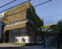 Boutique 'Ann Demeulemeester' 650-14, Sinsa-dong, Gangnam-gu MASS Studies (Architect: Cho Minsuk + Park Kisu), 2007  This fashion boutique for the Belgian fashion designer Ann Demeulemeester has a façade that is designed to be a vertical garden with living plants. The main elevation is a geotextile wall planted with a herbaceous perennial, the other three clad in steel sheets with propylene resin. Photo: Martin Eberle