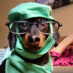 Dr. Crusoe: When you are sick, isn't it nice to have someone to care for you?