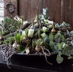 19 Februari 19.00 uur Voorjaarsstuk. Table Decorations, Vegetables, Spring, Floral Designs, Workshop, Flowers, Corning Glass, Easter Activities, Creative