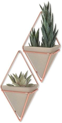 Umbra Trigg Hanging Planter Vase & Geometric Wall Decor Container - Great For Succulent Plants, Air Plant, Mini Cactus, Faux Plants and More, Concrete Resin/Copper (Set of Rose Gold Room Decor, Rose Gold Rooms, Succulent Hanging Planter, Hanging Planters, Succulent Plants, Wall Planters, Succulent Care, Retro Home Decor, Diy Home Decor