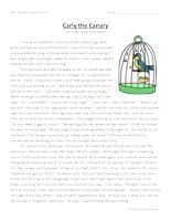 Second Grade Reading Comprehension, Second Grade Comprehension Questions, 2nd Grade Reading Comprehension, Second Grade Comprehension, Second Grade Reading Comprehension Activities