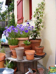 french garden ~ Donnas-art.blogspot.com