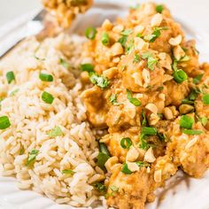 Slow Cooker Thai Peanut Chicken - The easiest peanut chicken ever and your slow cooker does all the work! Topped with crunchy peanuts, cilantro, green onions, and the peanut sauce is irresistible! Asian Recipes, Healthy Recipes, Ethnic Recipes, Free Recipes, Healthy Soups, Healthy Dinners, Easy Recipes, Arroz Thai, Slow Cooker Recipes
