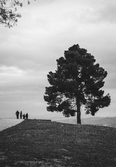 Paseos fotográficos (V) | Buscando la luz, fotografía.