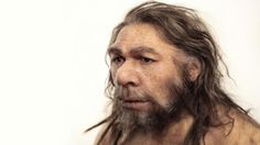 Thanks to a spot of prehistoric hanky-panky, many of us carry Neanderthal genes. What is this rogue DNA doing?