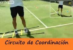 circuito de coordinacion para pádel