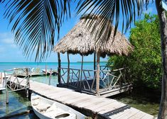"""Caye Caulker is a small limestone coral island off the coast of Belize in the Caribbean Sea. An epitome of relaxation as the Belize rule of law is """"No shoes, No shirt, NO PROBLEM"""" Perfect destination for the water lover. Honeymoon On A Budget, Beach Honeymoon Destinations, Honeymoon Ideas, Top Destinations, Vacation Ideas, Ambergris Caye, Belize City, Guatemala, Caye Caulker"""
