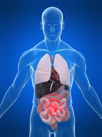 Dr. David Jernigan, Hansa Center: Ammonia Toxicity in Lyme Disease, MS, ALS, Parkinson's, Fibromyalgia, ME...