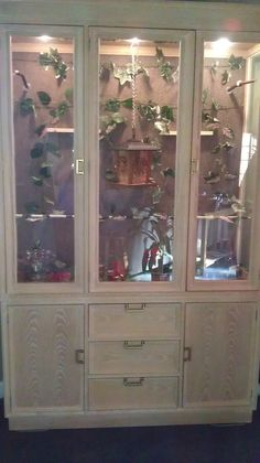 This is an Aviary for my Gouldian Finches that we made out of a china cabinet.
