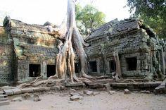 Cambodge - Temple de Angkor