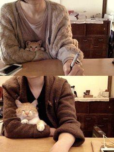 oooooooo: 誰だって机に向かうときはこんなかわいい相棒が欲しいはず実にうらやましい状況:らばQ
