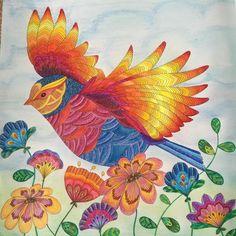 #milliemarotta #animalkingdom #colouringin