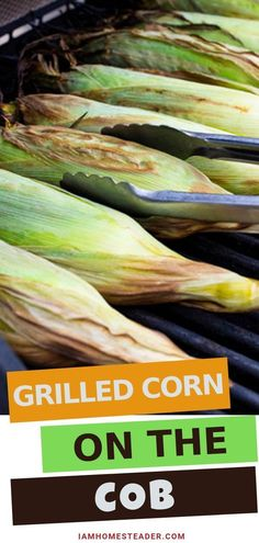 Seasoned grilled corn on the cob in foil, with husks on, or with husks off options! This is a healthy game day recipe with an amazing herbed butter coating. Save this quick grilled corn on the cob for later! Tuna Salad Pasta, Pasta Salad Italian, Summer Grilling Recipes, Summer Recipes, Bbq Corn On The Cob, Corn Cob, Grilled Corn On Cob, Pellet Grill Recipes, Ears Of Corn