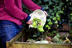 kompost a jicha z bylin zalozeni a urychleni zrani kompostu byliny vhodne kompostovani a vyrobu jichy 2