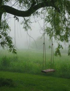 whoa, this reminds me sweetly and painfully of my own childhood, when my grandfather built a swing in his back yard and would push me and my sister . . .