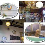 junk cafe FREAK'S(フリークス)