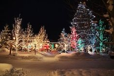 Sunriver Resort, Oregon. One of the best Christmas' ever!