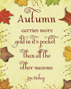Autumn carries more gold in it's pocket than all the other seasons quote gold leaves seasons autumn quote fall quote Season Quotes, Bliss, Autumn Scenes, Seasons Of The Year, Happy Fall Y'all, Happy Thanksgiving, Thing 1, Mabon, Samhain