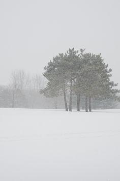 Golf Course Snow-2