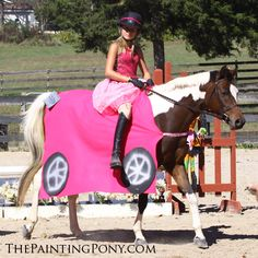 Halloween Horse Show Costume Ideas You'll Love - The Painting Pony Cars Halloween Costume, Minion Costumes, Horse Costumes, Cool Costumes, Horse Fancy Dress, Poodle Skirt Costume, Horse Mane Braids, Great Costume Ideas, Tennessee Walking Horse