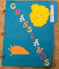 Grasslands Plant and Animal Adaptions Lapbook