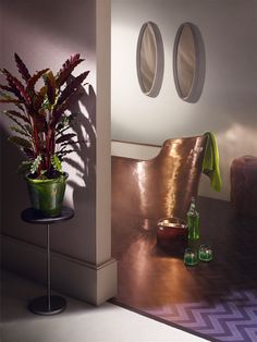 Amarcord bathtub, shooting for Wallpaper magazine.