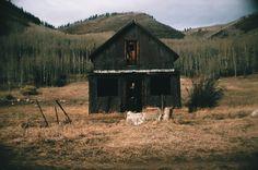 "cabinporn: "" Miners Cabin in Hunter Creek, Colorado. """